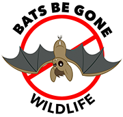 Bats Be Gone Wildlife - Logo